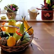 цветы на кухне фото